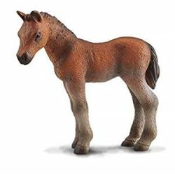 Thoroughbred foal. COLLECTA 88244