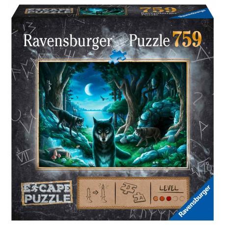 Escape puzzle: The Forbidden Basement.