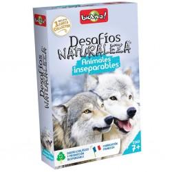 Nature challenge: funny animals.